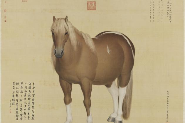 In mostra i disegni di Castiglione viaggio nella Cina del '700