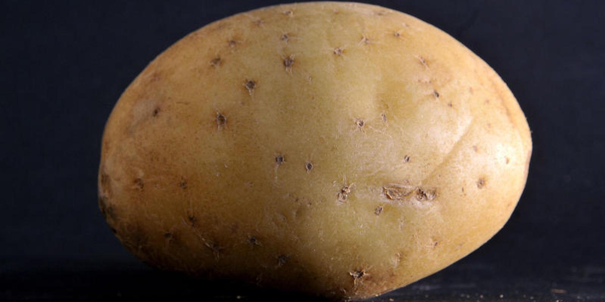 Qualcuno ha pagato più di un milione di dollari per la foto di una patata