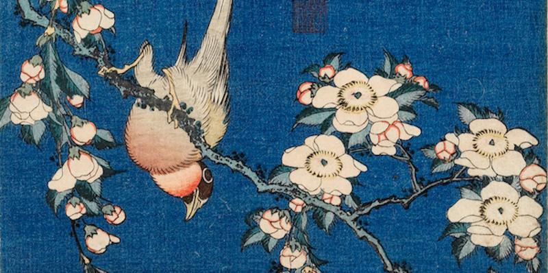 Un po' di foto della mostra di Hokusai a Milano