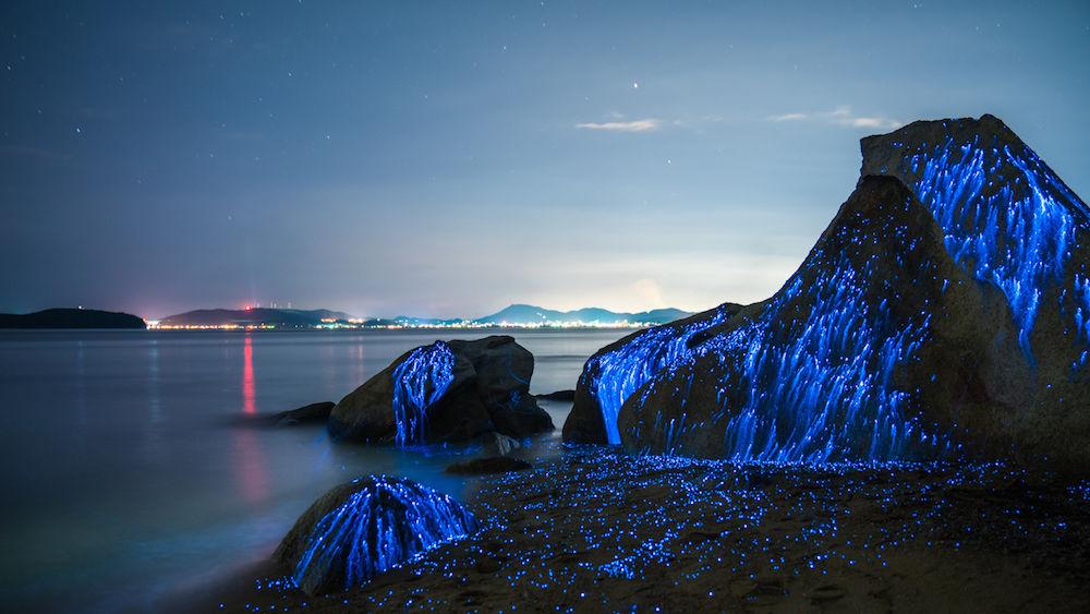 La costa di Okayama che al tramonto si illumina di blu