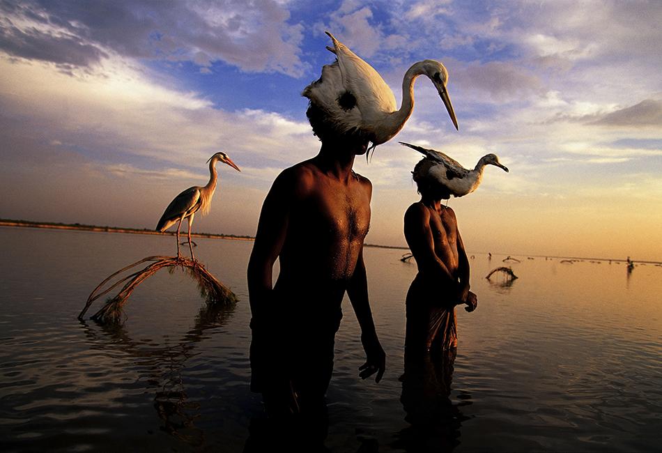 L'arte della fotografia secondo Randy Olson