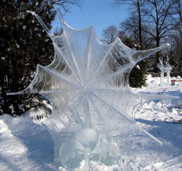 frozen-900x600