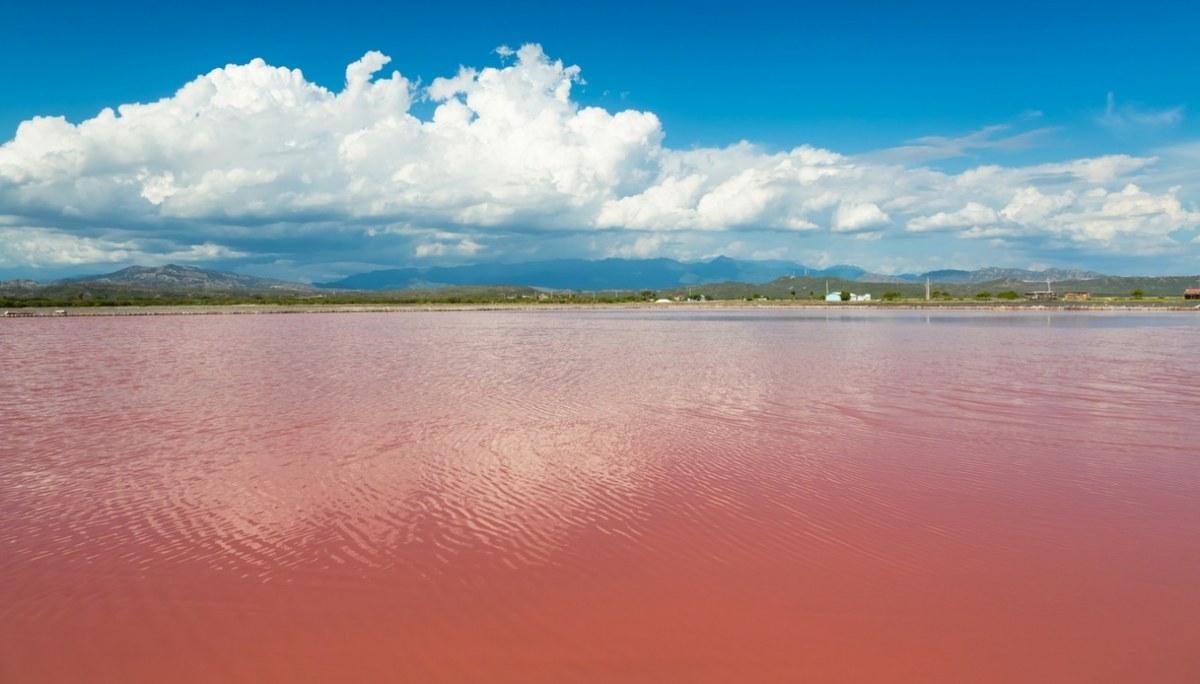 Lake Retba, il meraviglioso lago rosa del Senegal