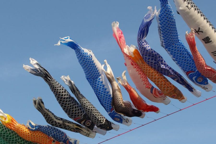 L'incantevole sfilata di aquiloni di Hamamatsu in Giappone
