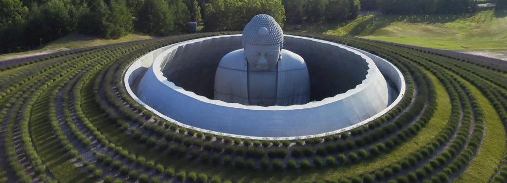 Tadao Ando: la collina del Buddha