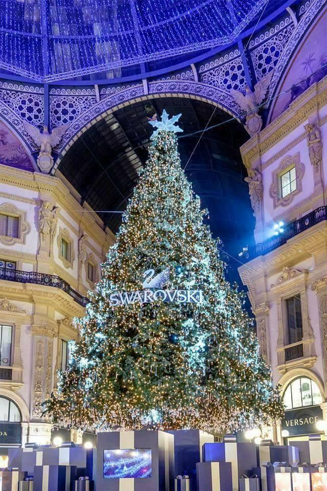 Vetrine e alberi le decorazioni natalizie pi belle del for Le piu belle mete natalizie