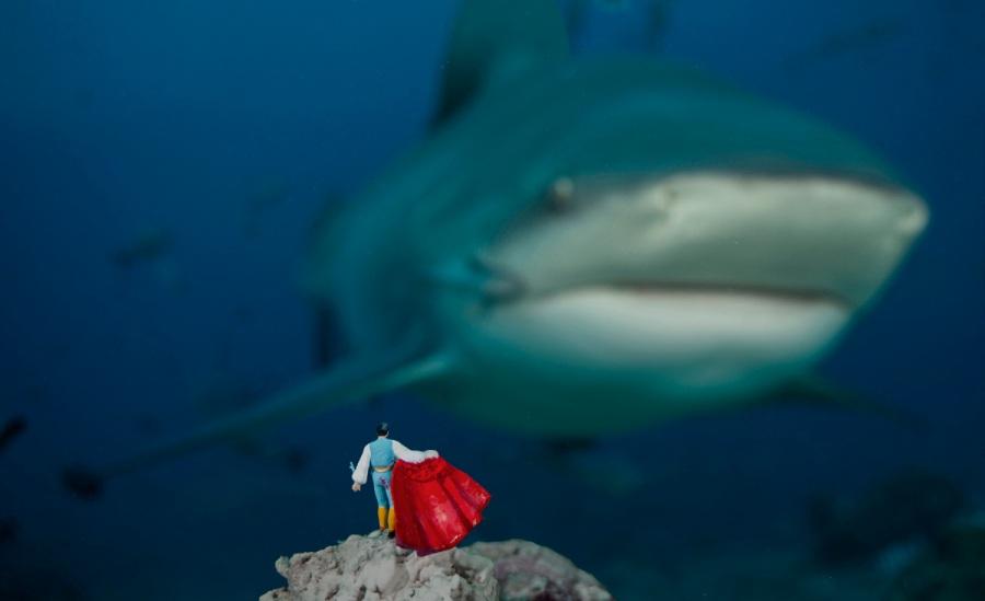 Arte sott'acqua: le miniature sottomarine