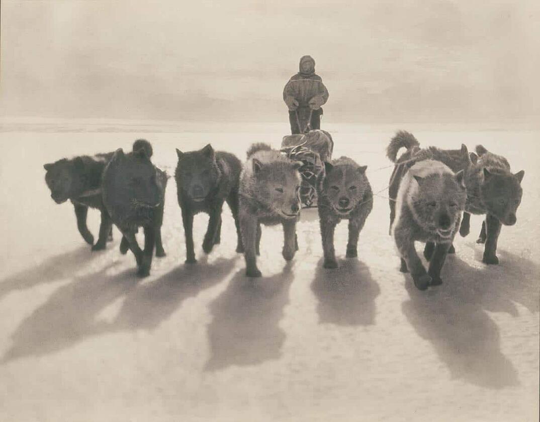 Le foto bellissime della prima spedizione antartica australiana del 1911